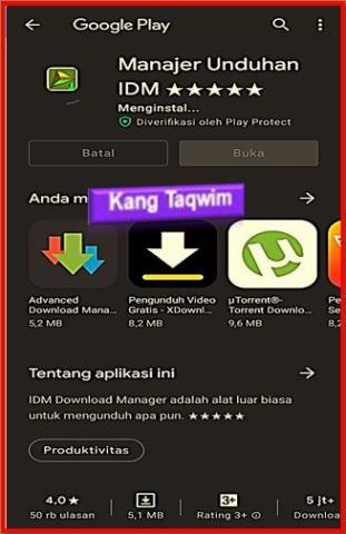 Instal IDM